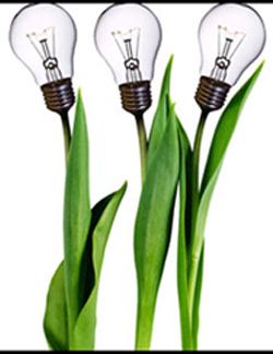 142 Lampe Sabz